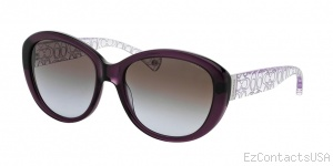 Coach HC8106 Sunglasses Asha - Coach