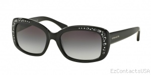 Coach HC8161 Sunglasses L146 - Coach
