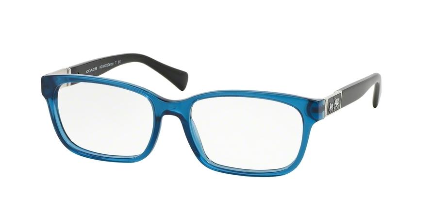 64fabcd60b Coach HC6062 Darcy Eyeglasses - Coach.